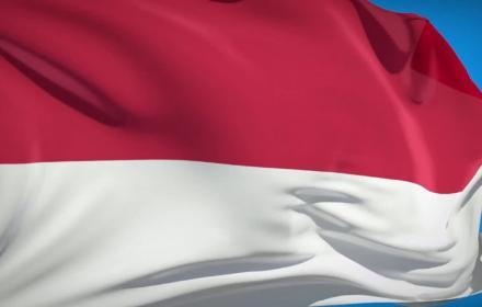 Flag ! les drapeaux du monde - épisode 15